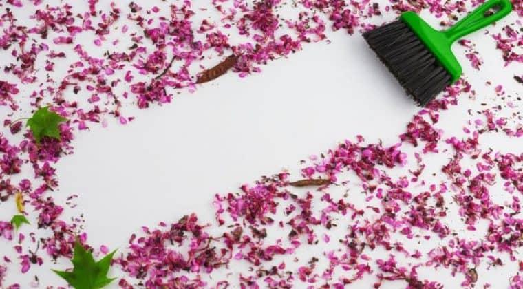 Trucos para limpiar su hogar en primavera