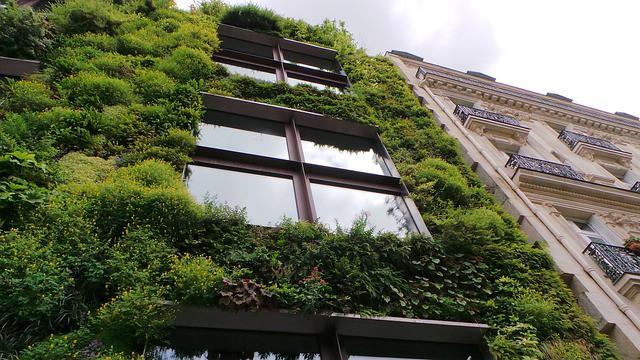 Tipos de arquitectura sustentable